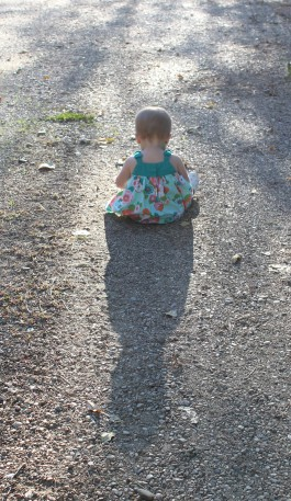 paisley shadow